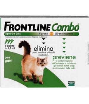 frontline combo gatti